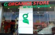 organic-stores-logo